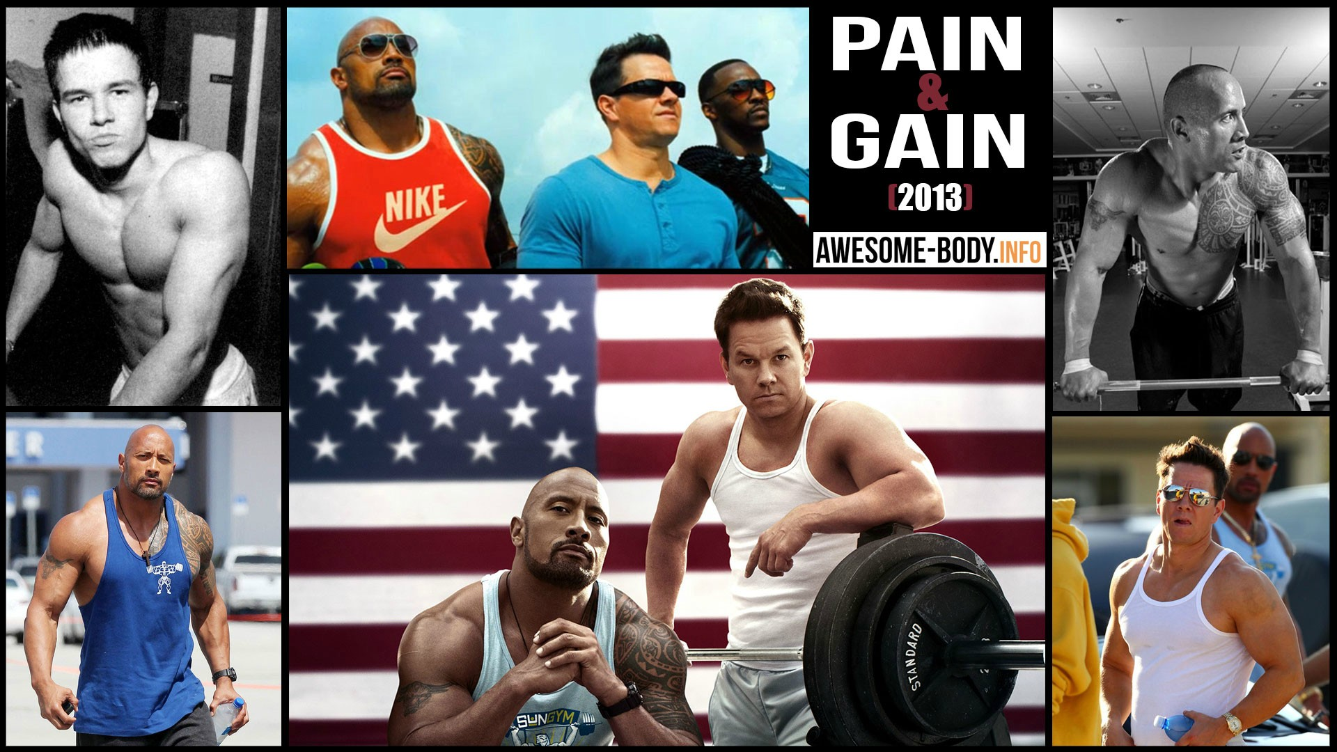 Pain And Gain Funny Quotes. QuotesGram