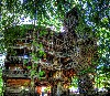Amazing Tree House Design Wallpaper wallpaper